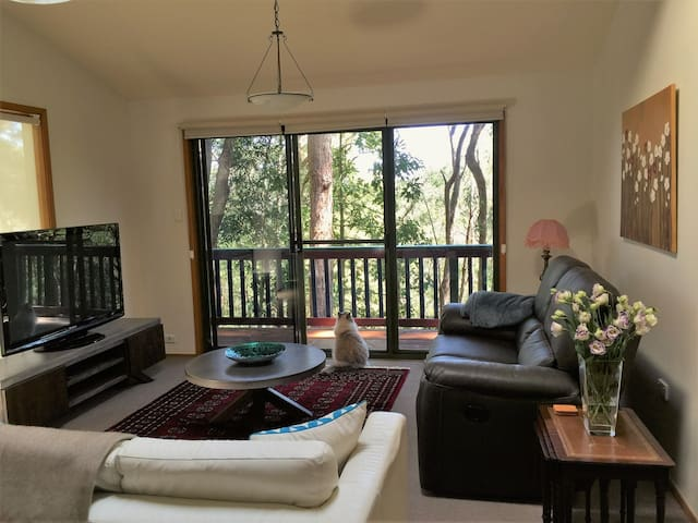 Tree house sanctuary - East Gosford - Huis