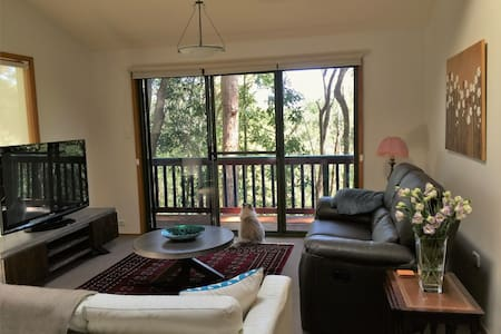 Tree house sanctuary - East Gosford