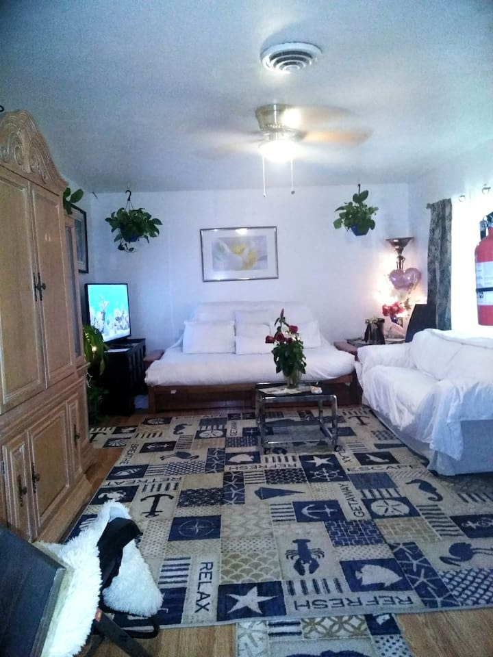 Living room queen thick matress futon/bed, plus couch opens into double bed can sleep 6 with King Luxury bed