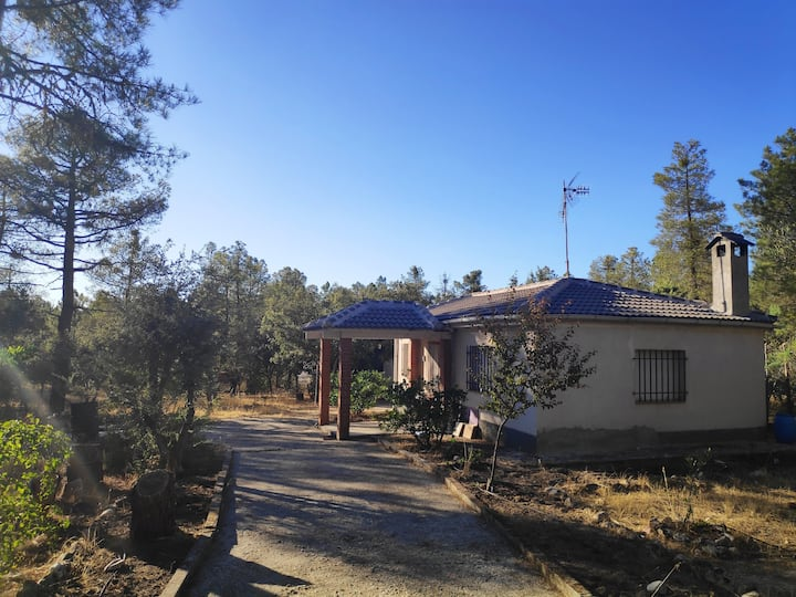 Humble cottage in a 2000 m2 land near Marugan.