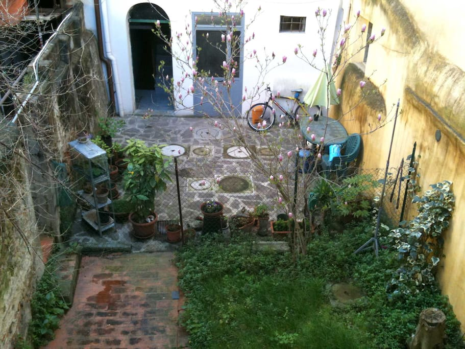 Private garden, perfect for bike and gardening