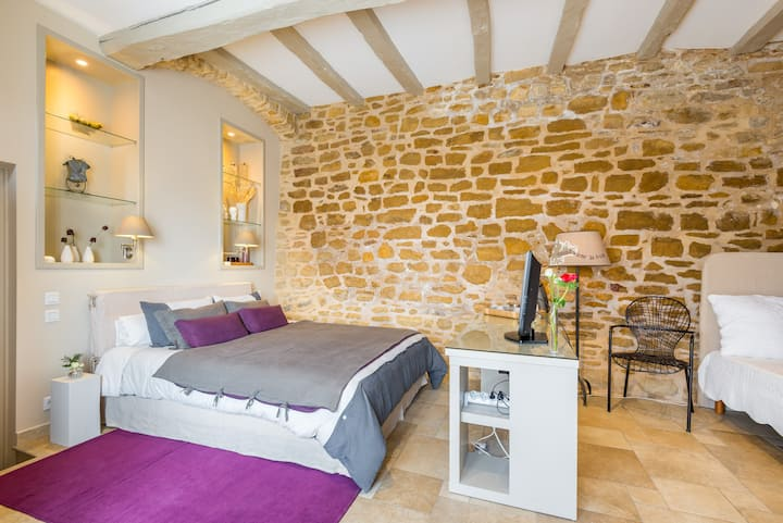 Studio Flat in the middle of Beaujolais