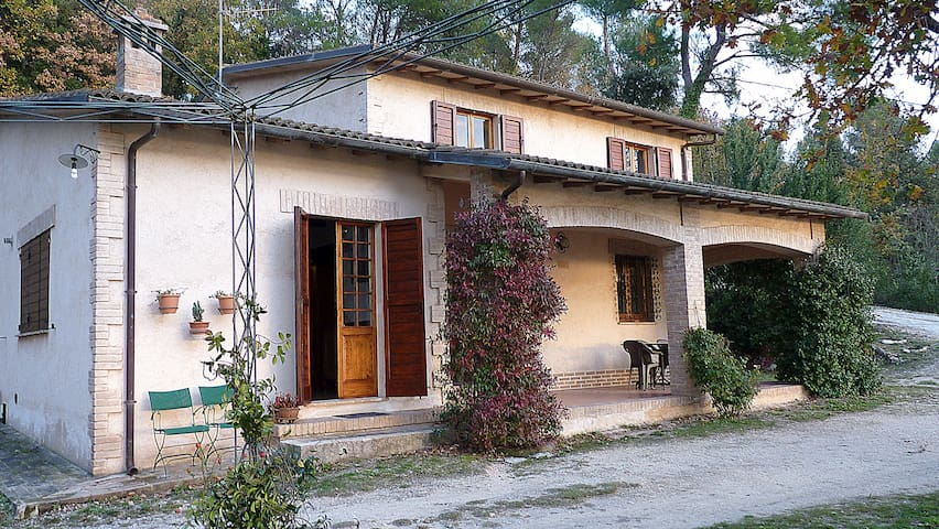 B&B Belvedere in Umbria - Campello Sul Clitunno - Apartment