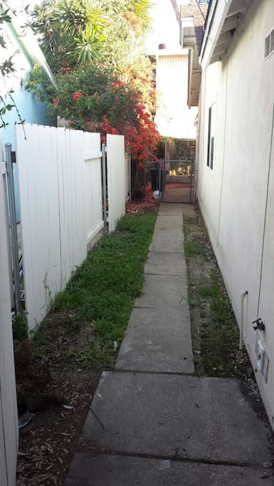 Side yard for a dog if needed.