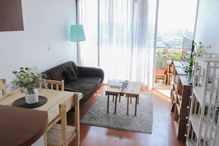 Apartment in downtown, Bellas Artes - Santiago - Apartment