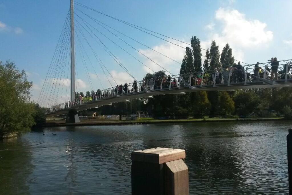 Next door to Reading's new bridge