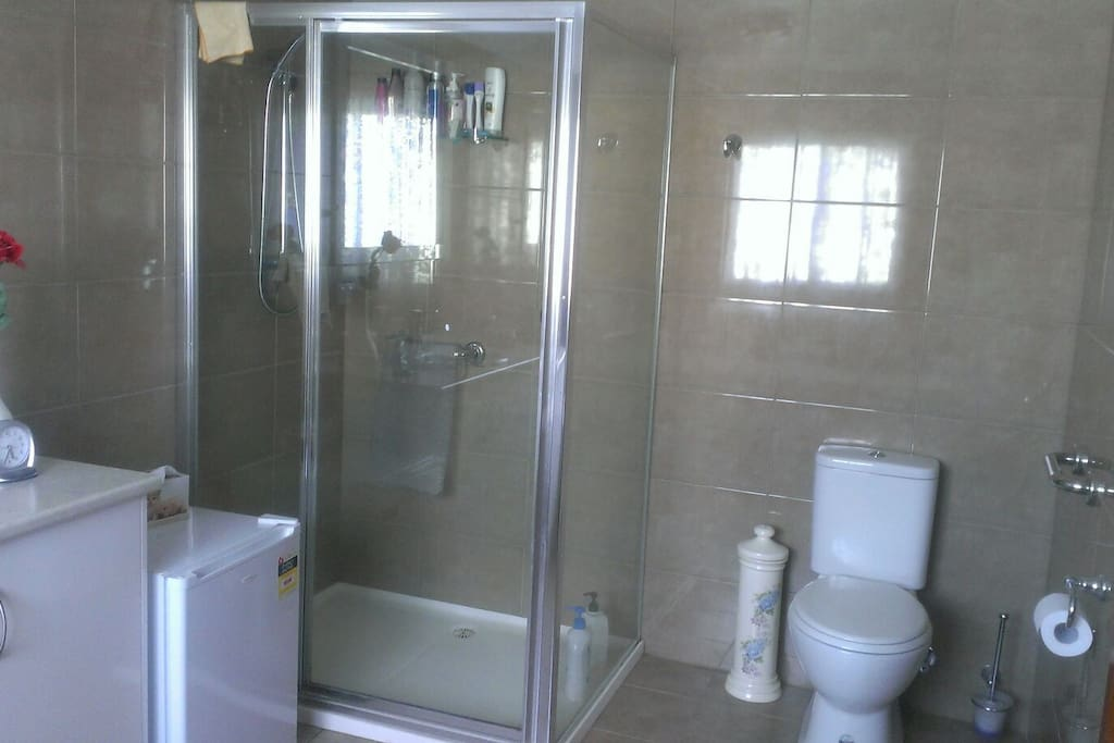 Toilet and large shower
