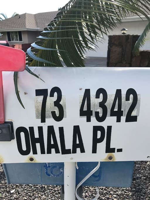 Address/Mail Box