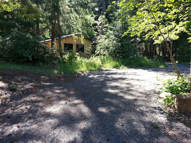 You will have your own private road to the guest cabin. This is a view of where you park