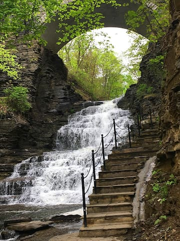 The Cascadilla Gorge Trail leading up to the Cornell campus, is a five minute walk away.  The trail is open from early April through early November.