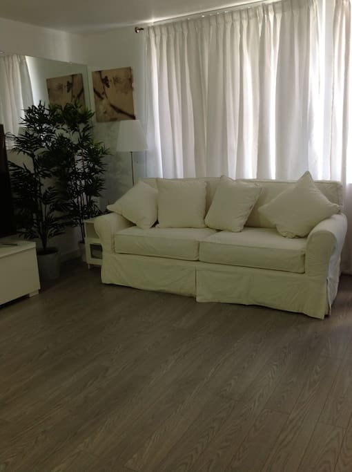 queen size pull out sofa bed