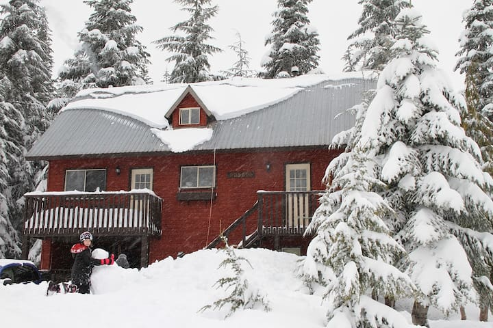 Valley View Cabin Rentals - Hemlock Valley - Almhütte