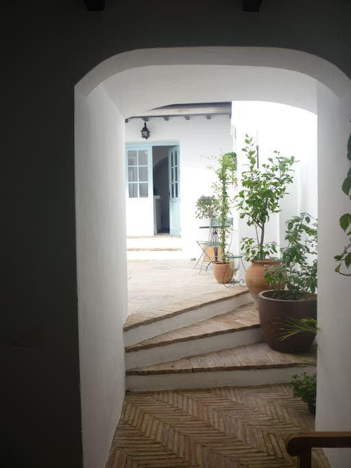 Entering the house through the patio