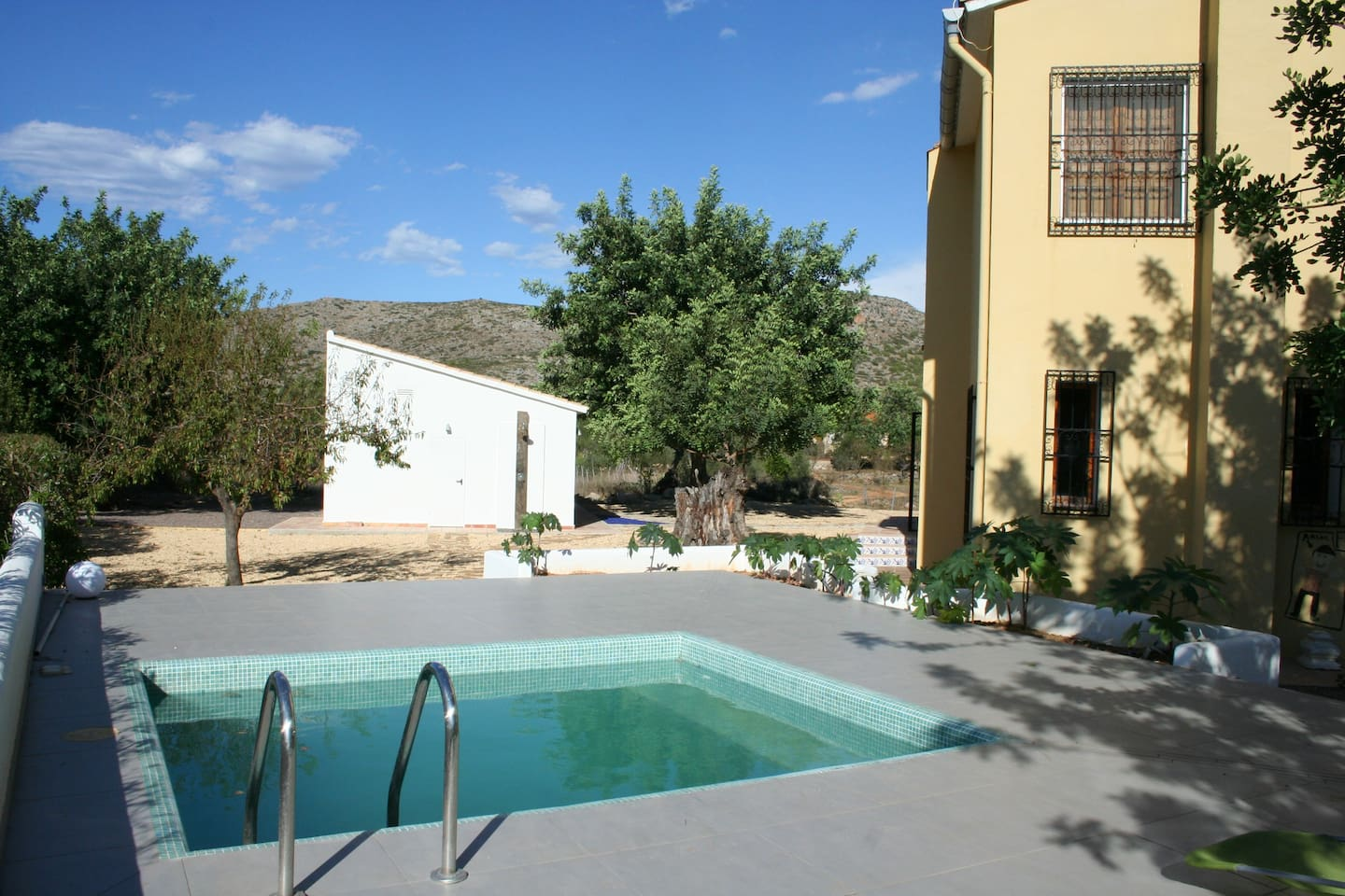 The pool area with the yoga studio behind and the house on the right