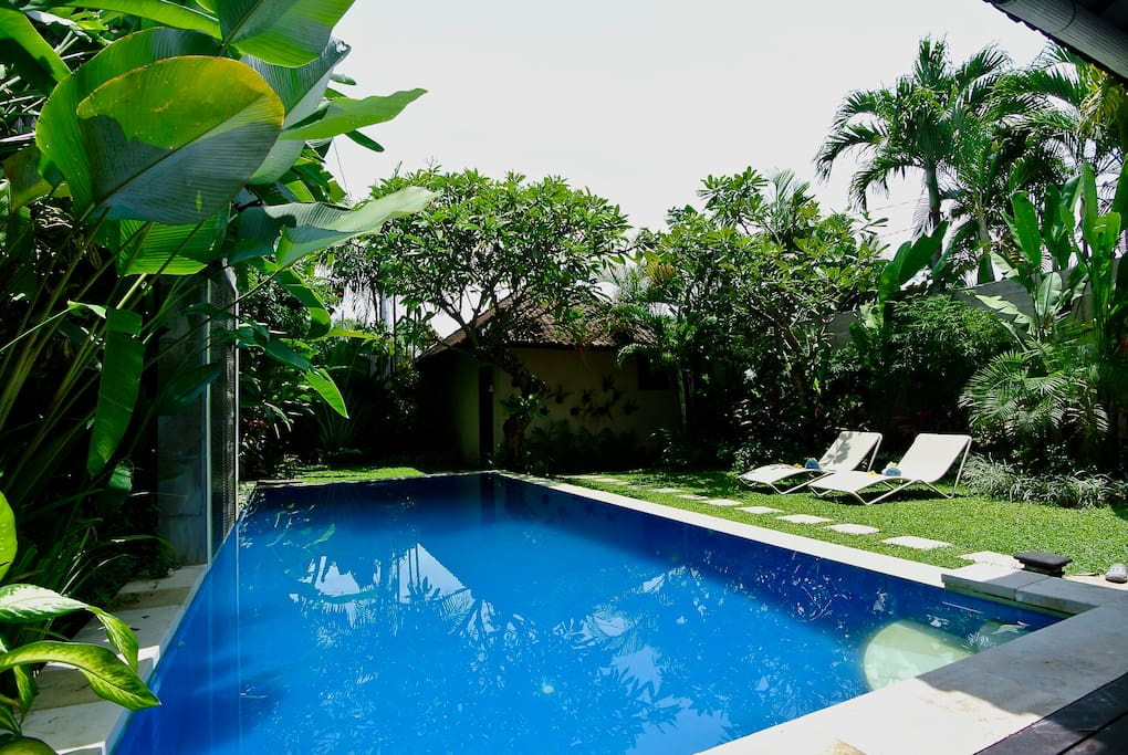 Private pool and tropical garden