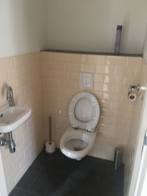 The toilet downstairs