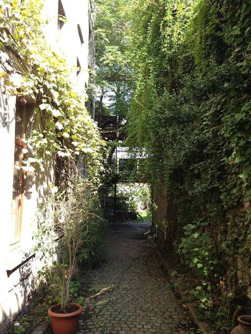 The alley, the entrance to the appartement. In summertime.