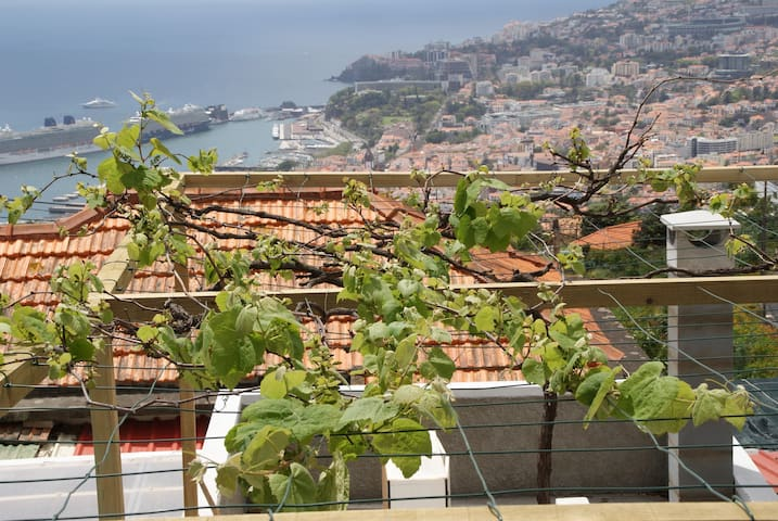 Funchal cosy home with vine terrace and ocean view