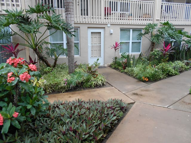 GORGOUS,1/1 CONDO,POOL,GARAGE,VERY TROPICAL,WIFI!! - South Padre Island - Lägenhet