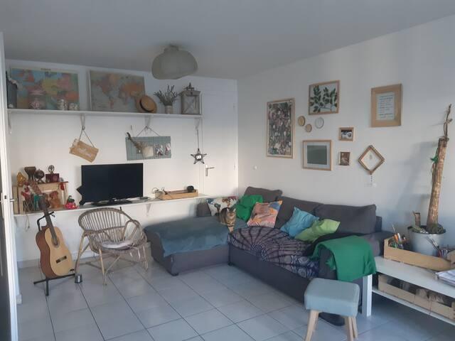 Logement valence ville gare présence d'un chat