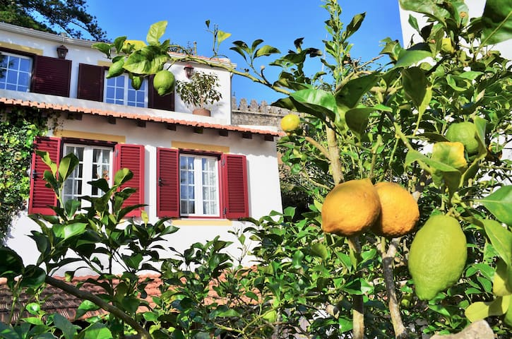Casa Satakieli - cottage in Sintra - Sintra - House