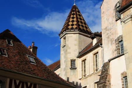 Logis des Gouverneurs bel appartement ensoleillé - Semur-en-Auxois