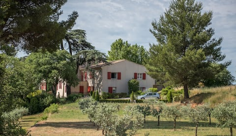 Bright and lovely F3 within a Provencal vineyard