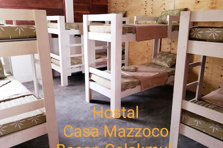 """Hostal Casa Mazzoco Becan Calakmul """"Las Cotorras"""""""