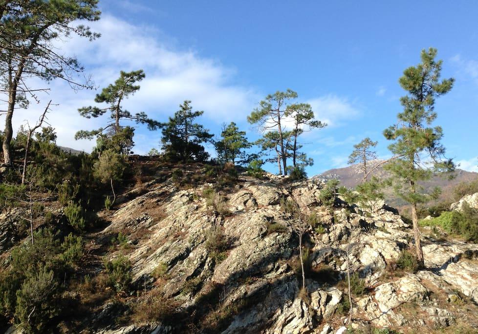 Montagna intorno a Verzi