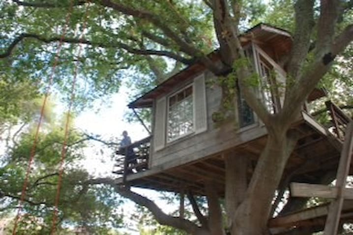 California The Top Treehouses For Rent In California