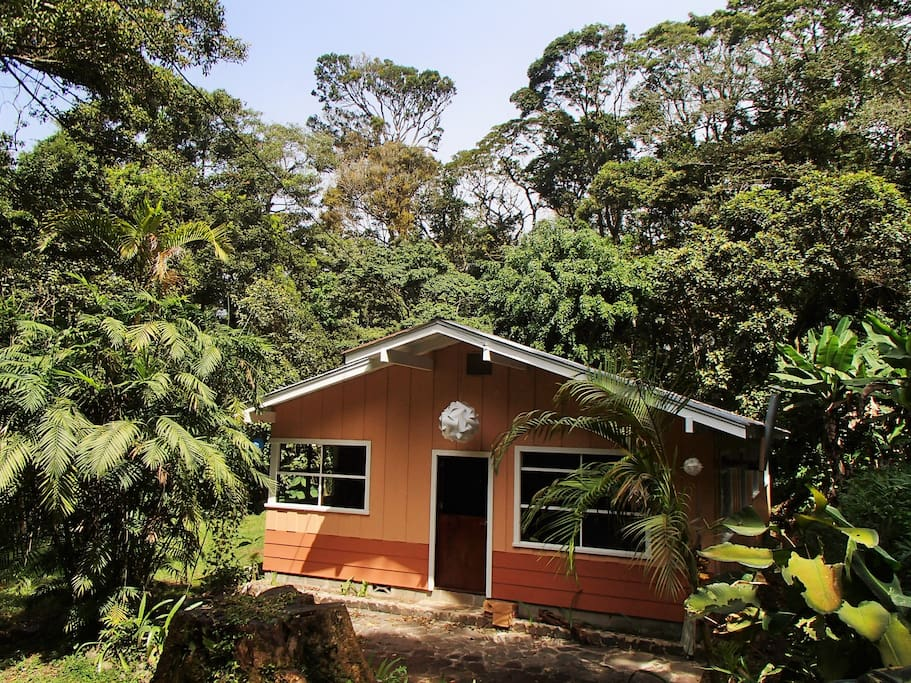 Forest garden house houses for rent in monteverde for Costa rica house rental