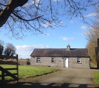 Moate Cottage (near Kilkenny city) - 基爾肯尼