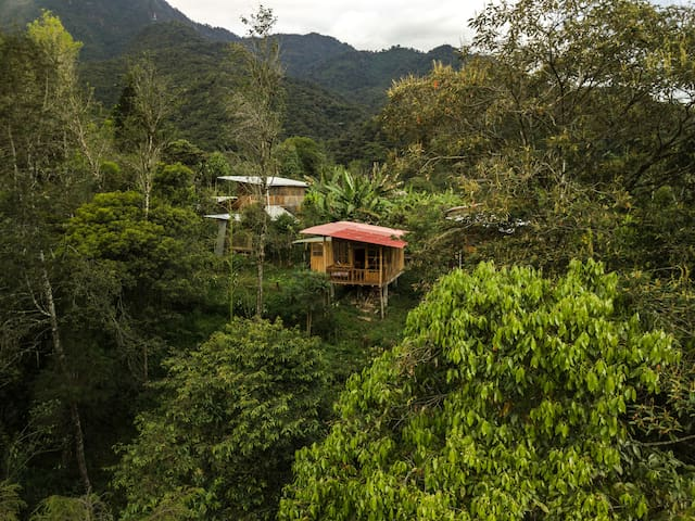 Intag Colibrí Farm- Valley view balcony cabin
