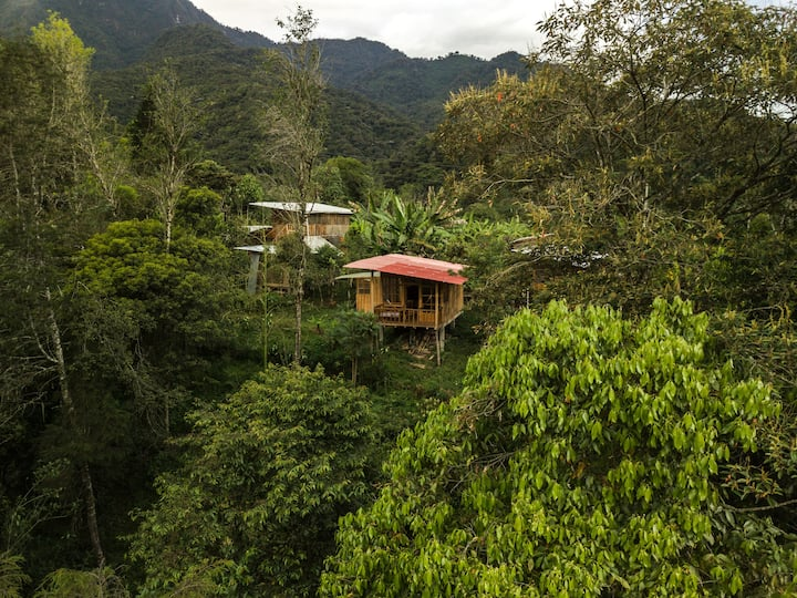 Intag Colibrí Cloud Forest Reserve - Balcony Cabin