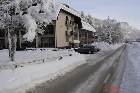 Kranjska gora - studio apartment