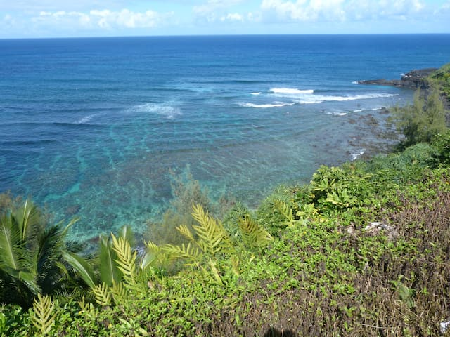 Your own studio, walk to the beach - Princeville