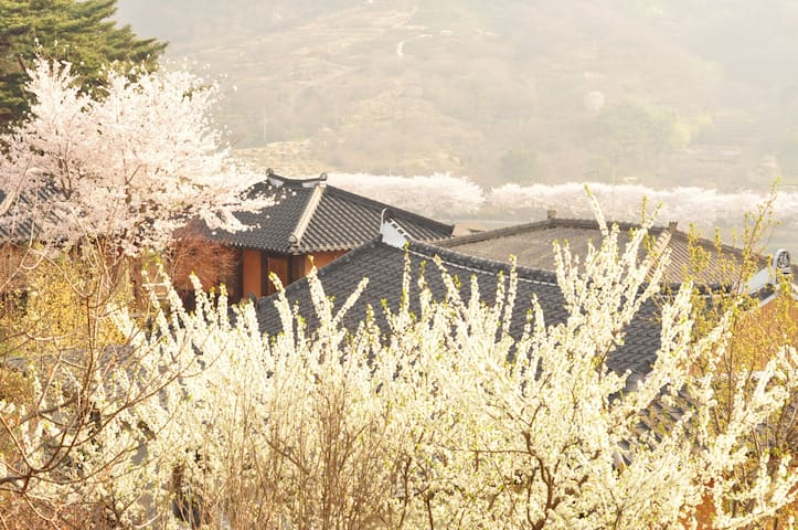화개장터 매화 마을 인근 한옥 게스트 하우스 독채 4인실 - Daap-myeon, Gwangyang-si