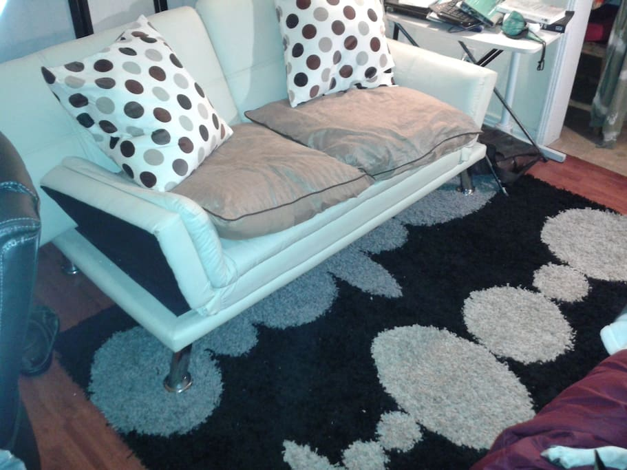 Sofa convertable into a bed. Just added new carpet
