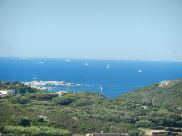Sardegna Nord : per 6 vista Corsica - Santa Teresa di Gallura - Apartment