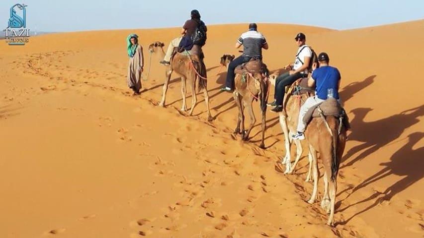 Camel Trek Bivouac Merzouga - Merzouga - Overig