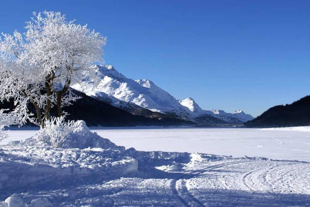 Lago di Sils in inverno