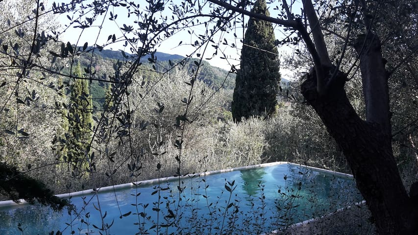 Exclusive pool in a hilly farmhouse, 3 double room - Massarosa - Apartament