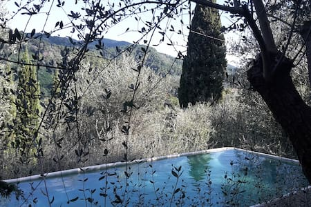 Exclusive pool in a hilly farmhouse, 3 double room - 马萨罗萨(Massarosa) - 公寓