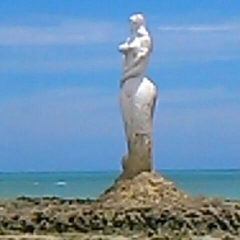 O lugar todo em Riacho Doce . - Mirante da Sereia - Riacho Doce - Alagoas - House