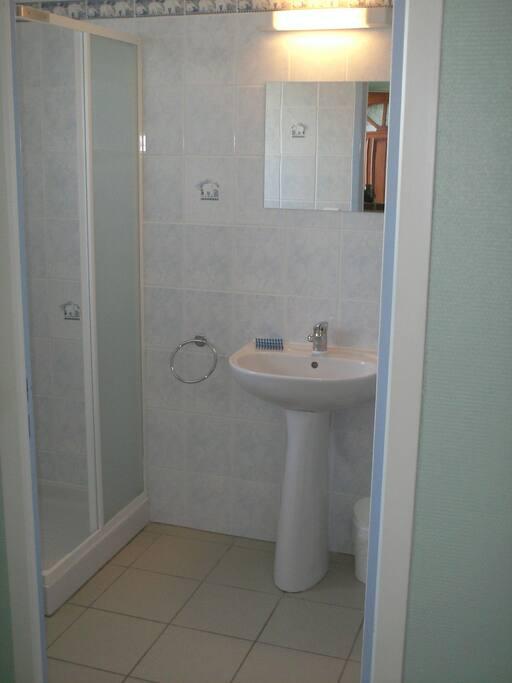 salle d'eau carrelée avec fenêtre+ WC