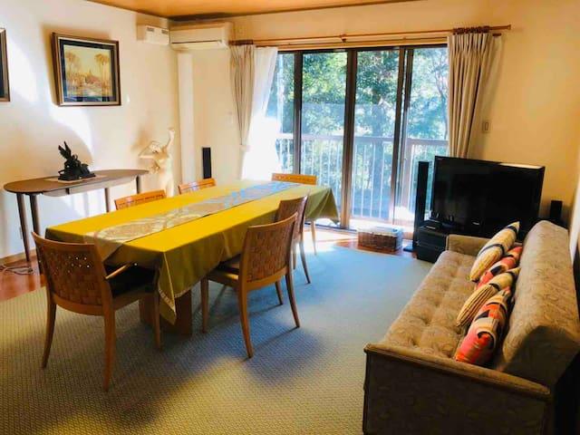 南向きのリビングルーム Living Room