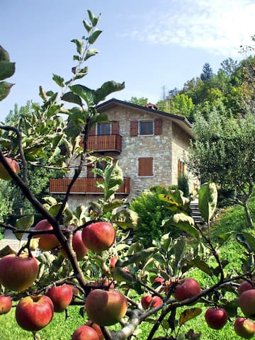 Casa Martina B&B - Zogno - Bed & Breakfast