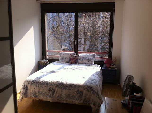 Room in a beautiful open plan 3 bed - Basel - Flat