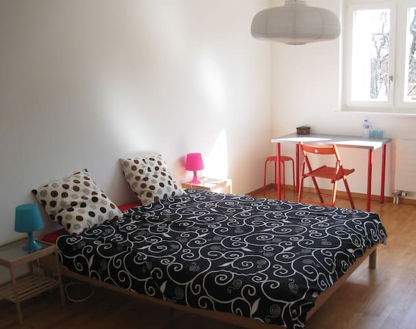 Charming Bedroom, 50m from station  - Nyon - Квартира