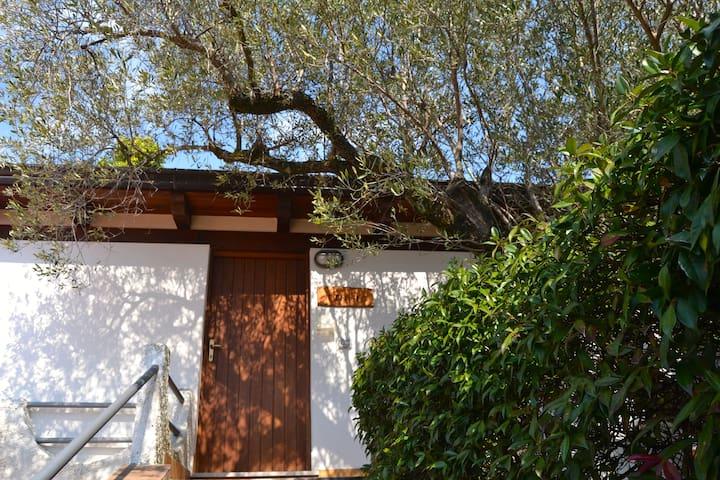 Casa Vacanze Tramontana - พาลินูโร - บ้าน